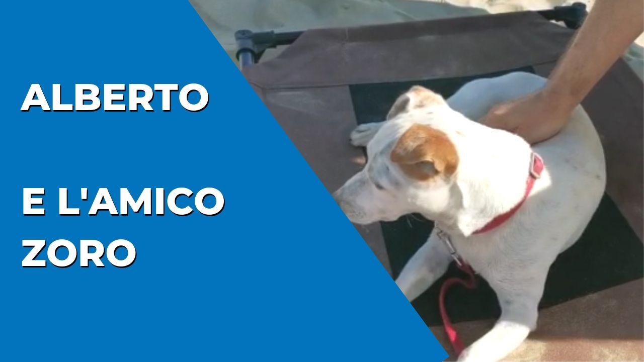 Alberto e l'amico Zoro - Bagno Riviera 1 di Rimini a Rivabella